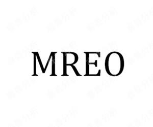MREO_AI智能生发仪